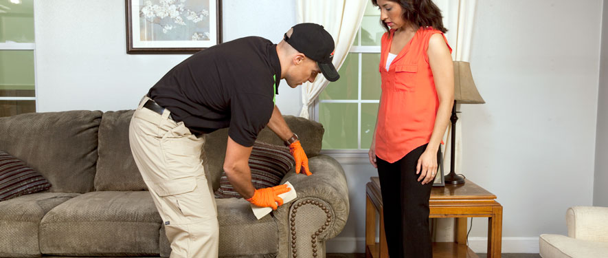 Lynwood, CA carpet upholstery cleaning